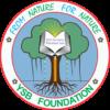 ysbfoundation.org